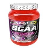 Amix BCAA Instantized,  0.55 lb  Fruit Punch