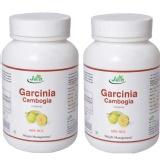 Jain Garcinia Cambogia (500 Mg) Pack Of 2,  60 Capsules