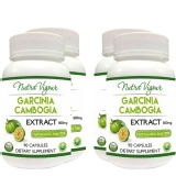 Perennial Lifesciences Garcinia Cambogia Extract (800mg) (Pack Of 4),  90 Capsules