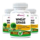 St.Botanica Wheatgrass Extract (500 Mg) Pack Of 3,  90 Veggie Capsule(s)
