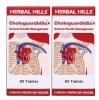 Herbal Hills Chologuardhills,  60 tablet(s)  - Pack of 2