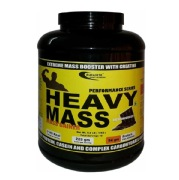 Euradite Nutrition Performance Series Heavy Mass,  6.6 lb  Rich Chocolate