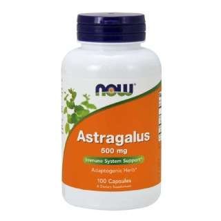 Now Astragalus (500 mg),  100 capsules