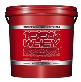 Scitec Nutrition 100% Whey Protein Professional,  11.02 Lb  Chocolate