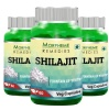Morpheme Remedies Shilajit (500 mg) Pack of 3,  60 capsules
